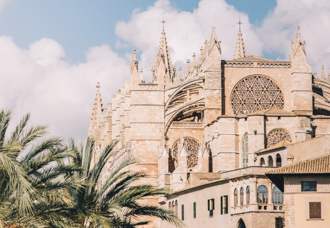 The Ultimate Palma Shopping Guide